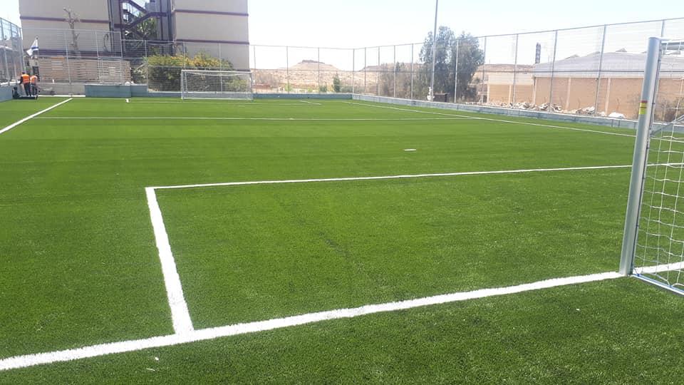 דשא סינטטי למגרשי כדורגל מקצועיים